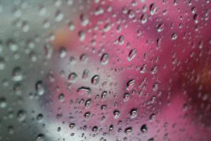 Bild zeigt scharfe Tropfen an Scheibe und pinker Käfer unscharf im Hintergrund...